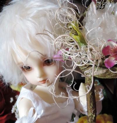doll-2128.jpg