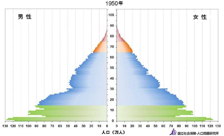 1950年人口ピラミッド