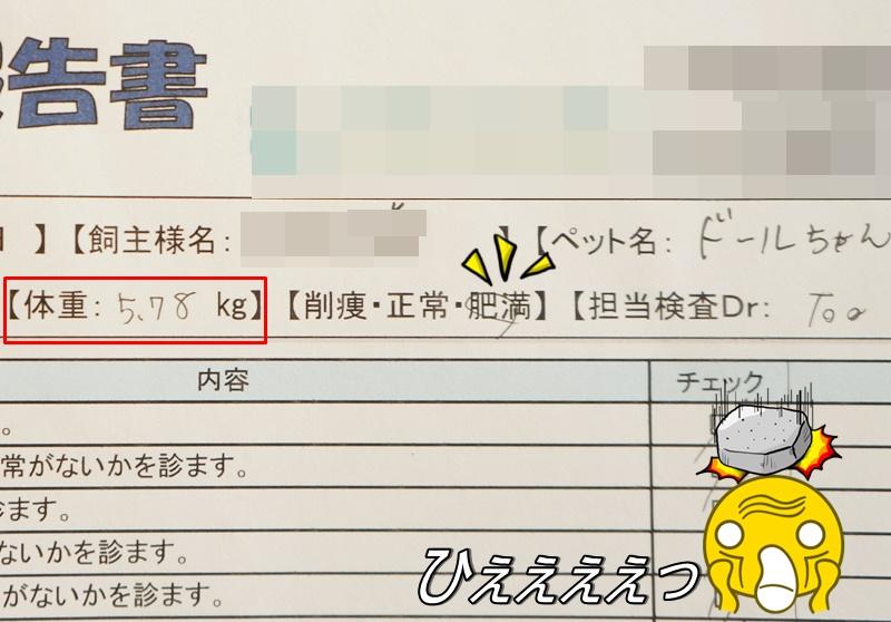 DSC06777_20161011143009567.jpg