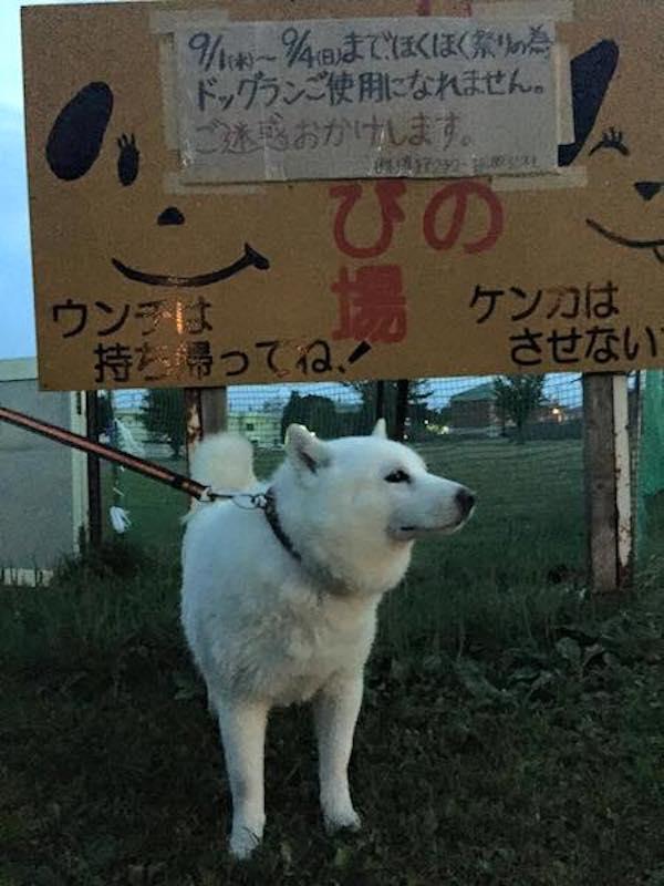 2016.9.2 道の駅真狩村