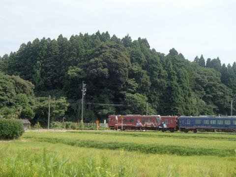 P7312001.jpg
