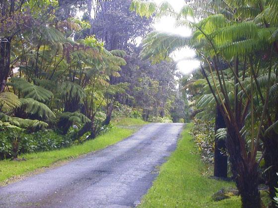 hawaii view2