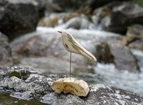 流木の鳥ー5月ー5
