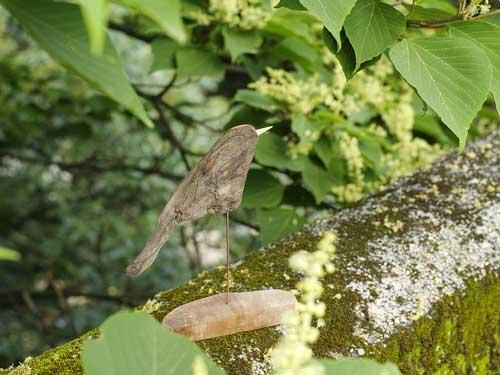 流木の鳥ー7-3-3