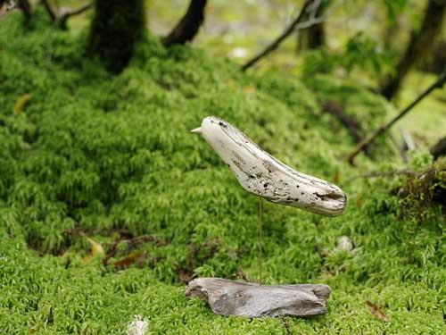 流木の鳥―2016-7-9-7