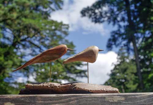 流木の鳥ー2016-9-24-