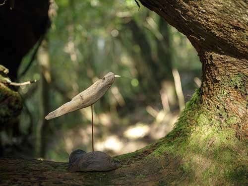 流木の鳥ー2016-10-1-1