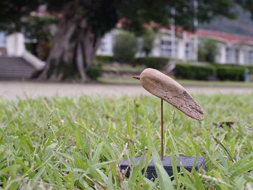 流木の鳥ー2016-10-9-5