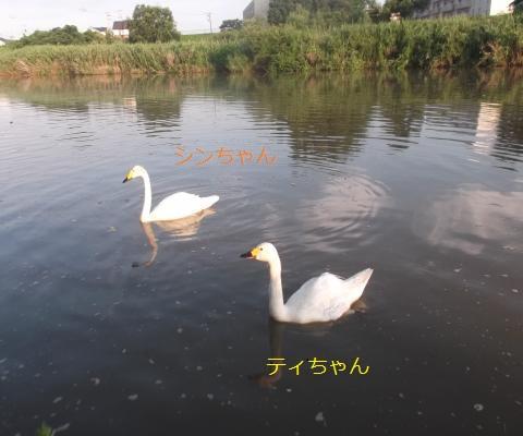 DSCF0722_convert_20160806064828.jpg