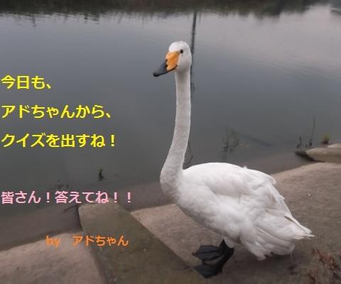 DSCF2900_convert_20160917192326.jpg