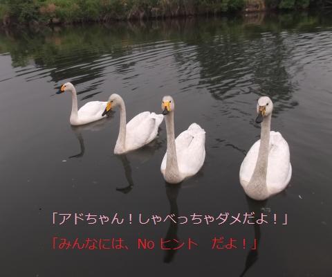 DSCF8765_convert_20160612175225.jpg