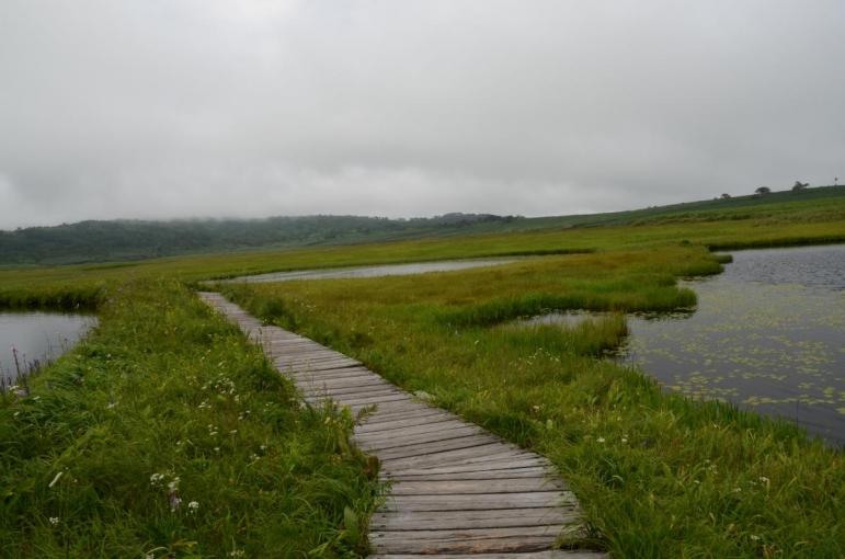 雨竜沼湿原(暑寒別天売焼尻国定公園)