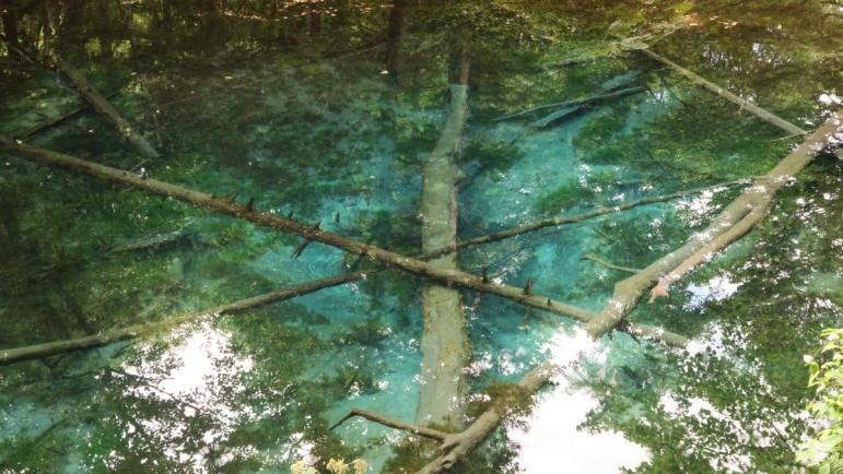 清里町 「神の子池」。