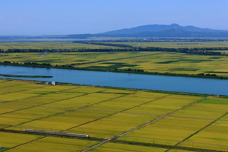 八郎潟ー鯉川
