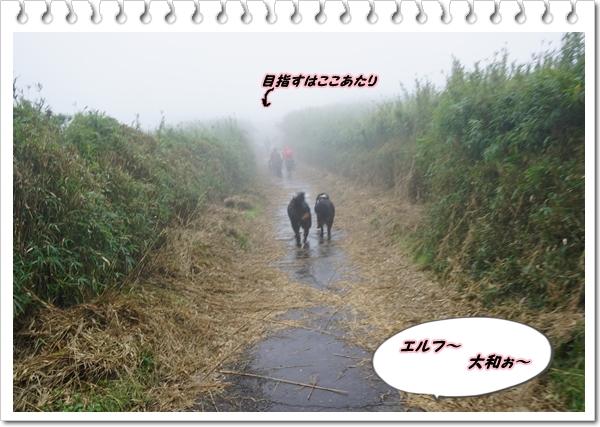 2019-10めざせ1