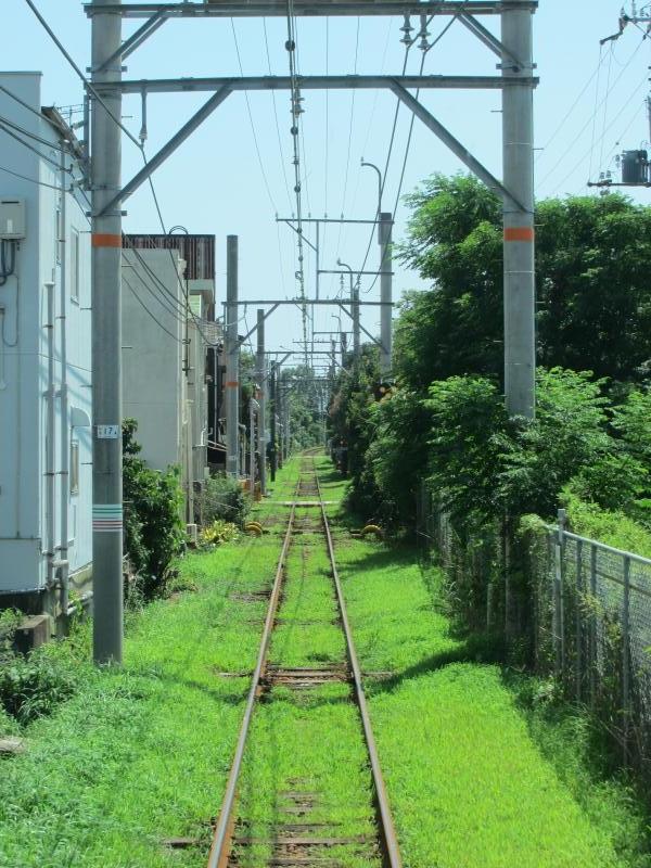 和歌山港線1