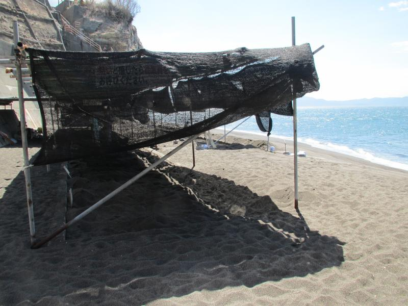 砂むし保養施設2