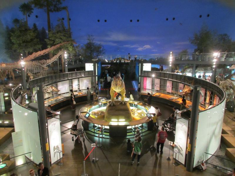 恐竜博物館07