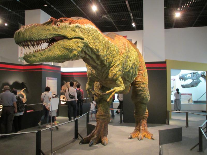 恐竜博物館06