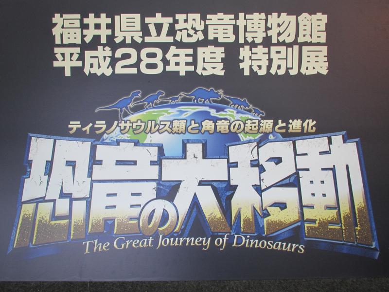 恐竜博物館02