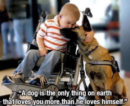 420x343犬は自分のことよりもずっと深くあなたのことを愛してくれる唯一の動物だ。