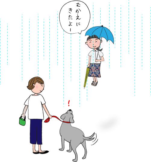 雨の日のラブラドール
