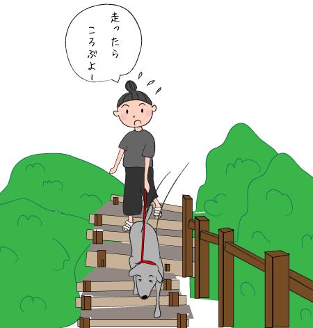 階段を下りるラブラドール