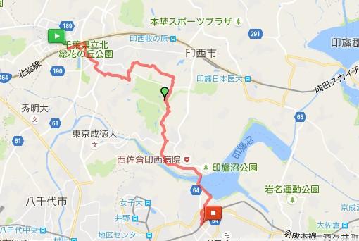 MMH161016印旛沼32