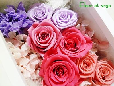 fleur384.jpg