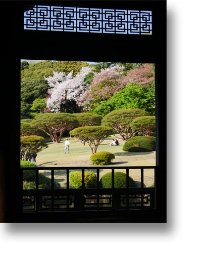 新宿御苑160407