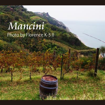 イタリア Mancini 140901