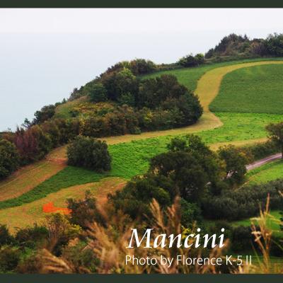 イタリア Mancini 140902