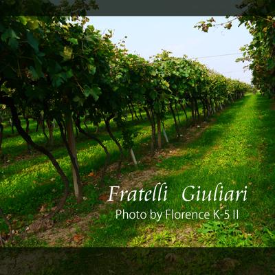 イタリア  Fratelli Giuliari140902