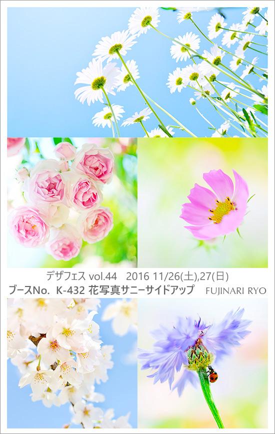 kokuti_df03