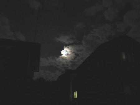 17日朝・月と鳩 009