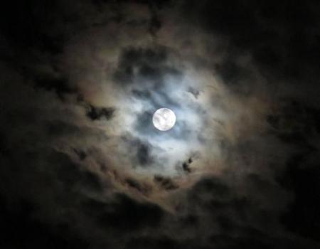 17日朝・月と鳩 014