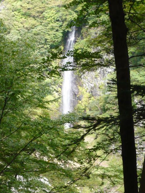 見事な滝です