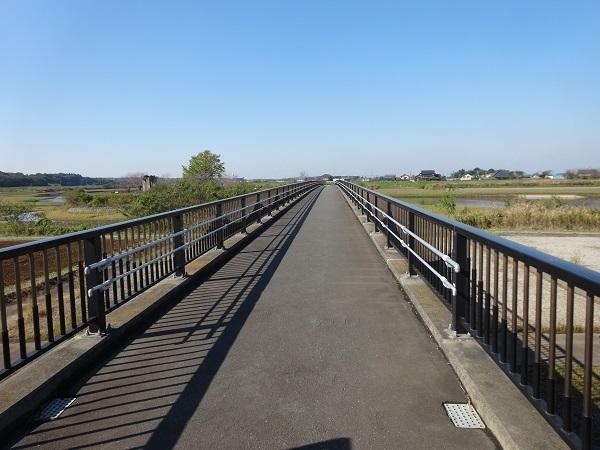 20161103福岡堰 (3)