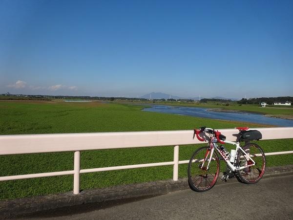 20161103福岡堰 (11)