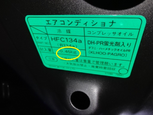 DSC09209.jpg