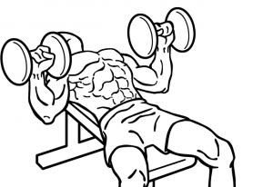 Dumbbell-bench-press-2 (1)-crop