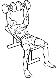 344px-Dumbbell-bench-press-1.png