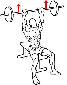 472px-Seated-military-shoulder-press-1.png