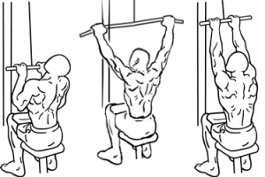 Close-grip-front-lat-pull-down-1-horz.jpg
