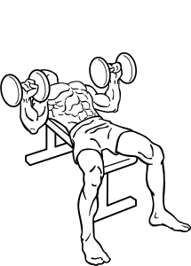 Dumbbell-bench-press-2.png