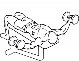 Dumbbell-decline-flys-2_20160821190358834.png