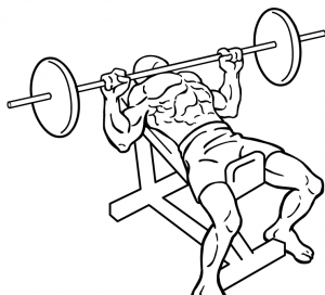 Incline-bench-press-2-crop.png