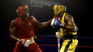 boxers-652388_960_720.jpg