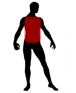 human-body-1261318_960_720.png