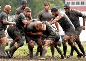 rugby-673453_960_720.jpg